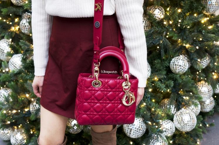 My Lady Dior 12